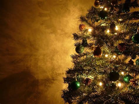 nicole charles associates christmas tree farms near