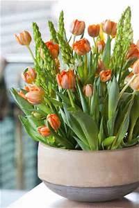 bulbes nos idees originales pour les mettre en valeur With tapis chambre bébé avec fleurs a bulbe amaryllis