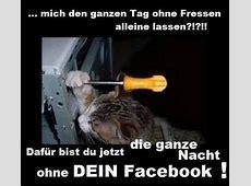 84 besten DEUTSCH Witze Bilder auf Pinterest Deutsche