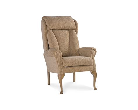 comfort chairs for the elderly riser recliner chairs