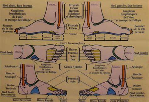 la r 233 flexologie plantaire ou comment pratiquer un avec pr 233 cision