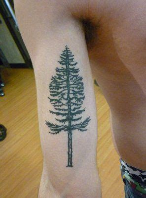 fir tree tattoo celtic meaning clarity achievement
