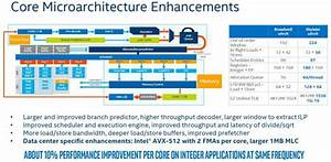 Intel Xeon Scalable Processor Family Microarchitecture