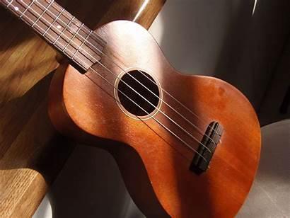 Ukulele Ukelele Concert Musical Instruments Mahalo 320c
