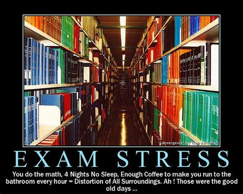 Stress Funny Quotes About Exams