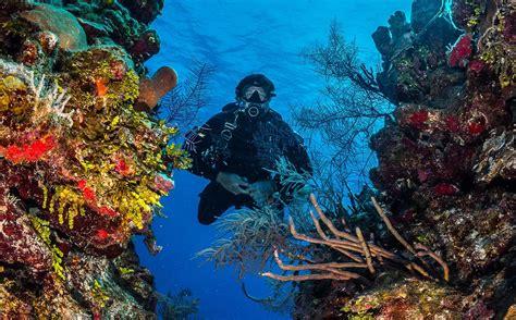 Dive Destinations by Naui Expands Its Reach With New Dive Destinations