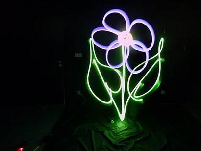 Painting Neon Flowers Glowing Flower Cool Cosmic