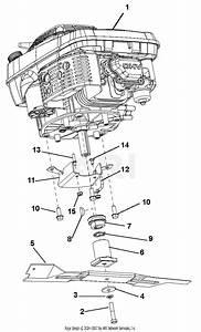 Rover Engine Belt Diagram 4