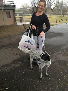 Mein Karma Berechnen : karma dog training 28 fotos hundeschule 78704 south austin austin tx vereinigte ~ Themetempest.com Abrechnung