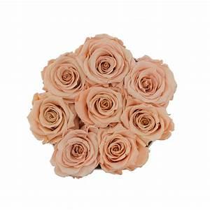 Ewige Rosen Box : teefarbene ewige rosen in schwarzer rosenbox small ewige rosen rosen produkte online ~ Eleganceandgraceweddings.com Haus und Dekorationen