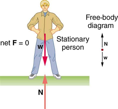 College Physics The First Condition For Equilibrium Voer
