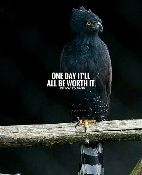Best Eagle Quotes Saying