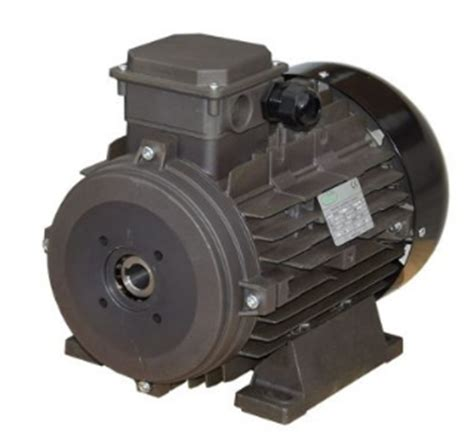 Elec Motors by Hollow Shaft Electrical Motor 3 7kw 5 0 Hp 1450 Rpm