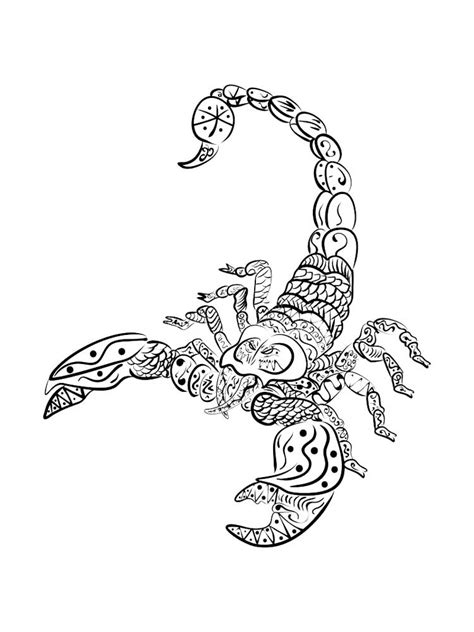 scorpio coloring pages  adults printable   scorpio coloring pages