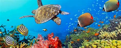 global change ecology bio