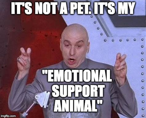 Emotional Meme - pets imgflip