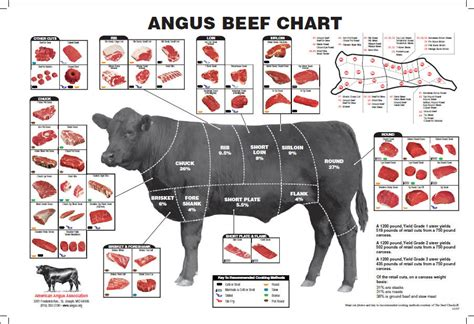 cuts of beef chart the grind steaks and chops