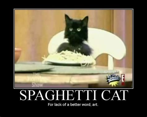 Spaghetti Memes - image 384745 spaghetti cat know your meme