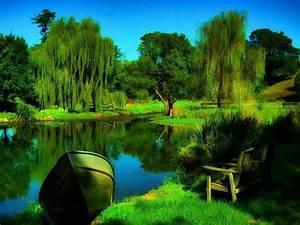 most-beautiful-nature-pictures-in-the-world-hd-pictures-4 ...