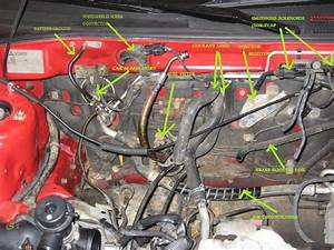 Engine Bay Cleanup  Vac Line Questions