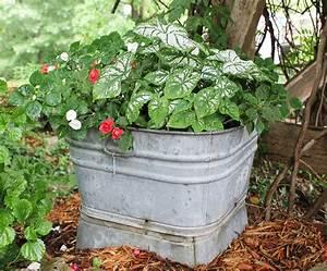 Container gardening ideas container gardening gardening for Container garden design ideas