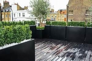 Pot Pour Balcon : olivier en pot pour la terrasse ou le balcon conseils et photos jardiniere haute buis et le toit ~ Teatrodelosmanantiales.com Idées de Décoration