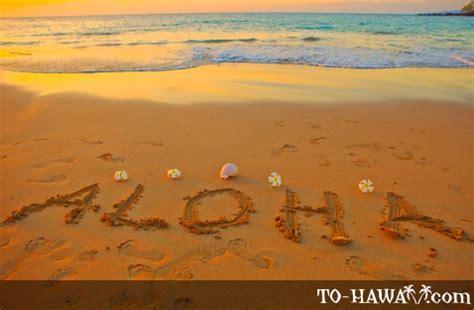 significa aloha