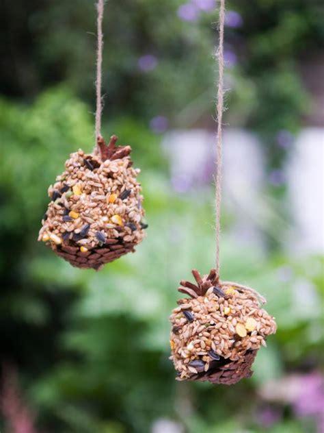 cool diy pine cone bird feeder ideas guide patterns