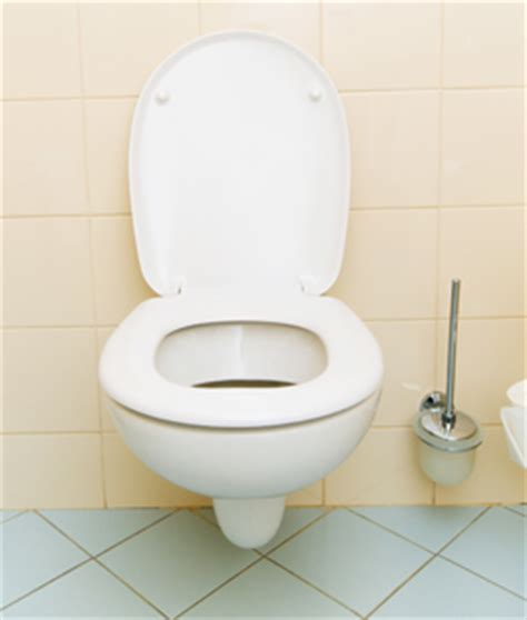 karwei gootsteen wc ontstoppen karwei