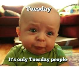 It's Only Tuesday Meme