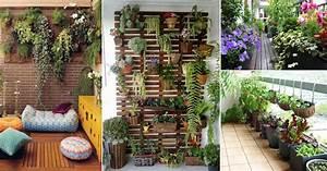 Tips, In, Having, A, Balcony, Garden
