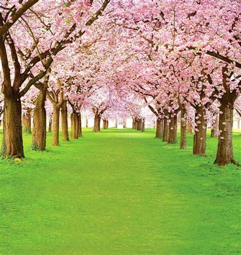Free scenic spring photo Backdrop 2045,5*10ft vinyl