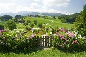 Blumen Im Garten : blumen garten ~ Bigdaddyawards.com Haus und Dekorationen