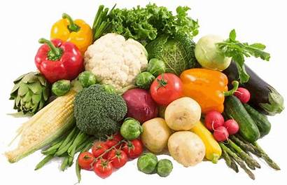 Vegetables Tropical Seeds Grow Easiest Planting Easy