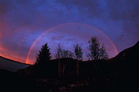 rainbows dont   color   rainbow