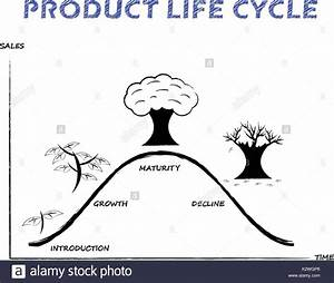 Black  U0026 White Product Life Cycle Diagram Is Drew By Pencil