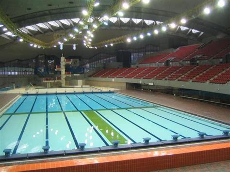 Download Free Olympic Games Swimming Pool Temperature