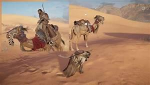 Mounts - Camel, Horse & Unicorn in Assassin's Creed Origins