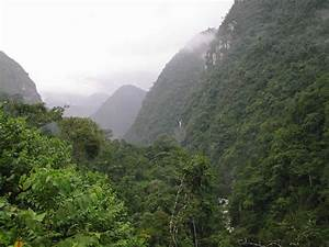 Environment 11    Tropical And Subtropical Seasonal Forests