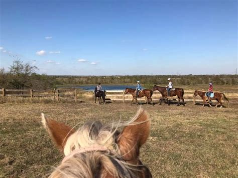 horseback austin maverick riding texas near tour