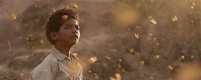 Film Lion Movies Gifs Favorite Shots Jackie