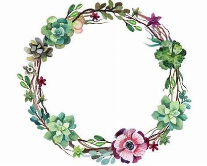 Succulent Wreath Clip Watercolour Flower Watercolor Background