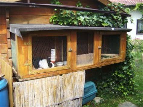 bauplan für hasenstall kaninchenstall selber bauen