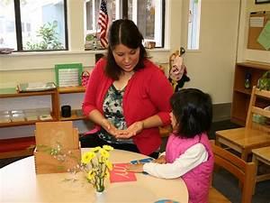 Curriculum Montessori Pdf