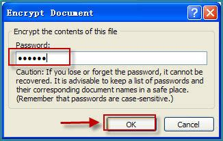 password protect ms word  document