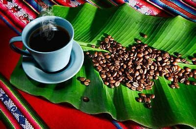 The first costa rican coffee beans reached the united states in 1860, so americans developed a taste for its unique flavors long ago. Costa Rican Tarrazu Organic Coffee Beans Fresh Roasted Daily 6 / 1LBS Bags | eBay