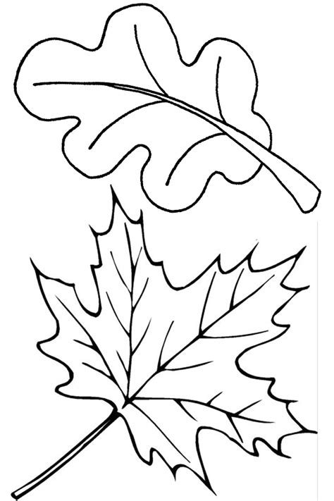 Coloring Leaves by Two Fall Leaves Coloring Page Free Printable Coloring Pages