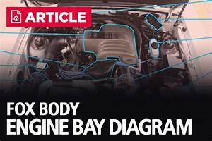 Ford Escape Engine Compartment Diagram