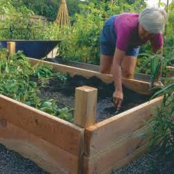 build your own raised beds vegetable gardener