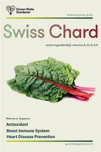 Swiss Chard  Medicinal Value  With A Perfect Score Of 1000